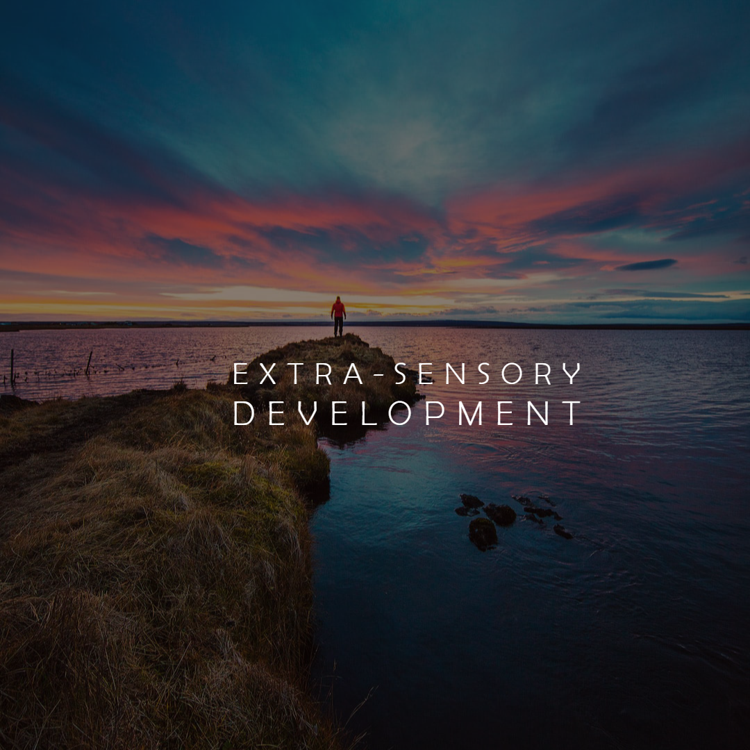 extra sensory development sonia novick